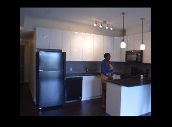 EasyRoommate CA - Brand New Apartment on Whyte , Edmonton - $770 pcm