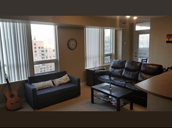 Room for rent in 2 BHK apartment in Downtown Toronto