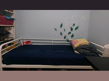 EasyRoommate CA - Furnished Room for Rent in Downtown Toronto 156ft2, Toronto - $800 pcm