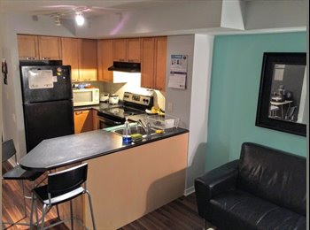 EasyRoommate CA - Downtown Condo near Ryerson, UofT, George Brown, Toronto - $1,300 pcm