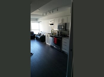 1 bedroom available in a 2bedroom downtown condo