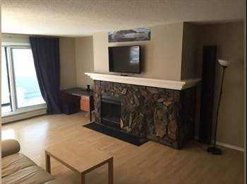 EasyRoommate CA - Huge 2 Bedroom in Oliver, close to Jasper Ave and Brewery District, Edmonton - $775 pcm