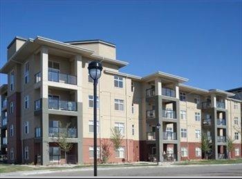 EasyRoommate CA - Urban Village on Whyte apartment for rent !!, Edmonton - $1,125 pcm