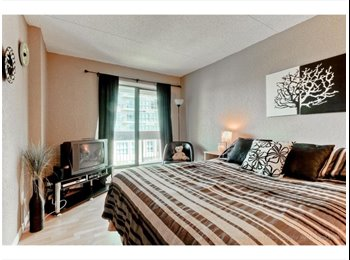 Master Bedroom for rent Downtown Calgary