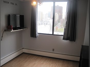 Roomate wanted to share downtown condo