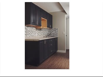 EasyRoommate CA - Newly renovated, Spacious and Respectful Home, Whole Level All to Yourself!, Calgary - $950 pcm