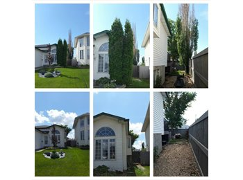 EasyRoommate CA - REDUCED!!! Room for Rent/Roommate Wanted: $700.00 UTILITIES INCLUDED !!!!, Edmonton - $700 pcm