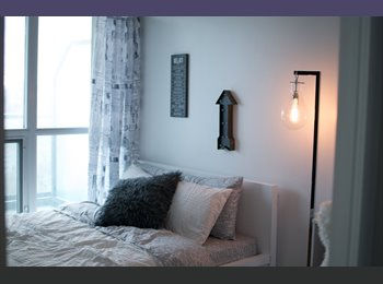 Private bedroom and bath in 2bd 2bath new condo in...