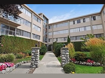 EasyRoommate CA - Near ubc one bedroom in 3 beds apt available now!, Vancouver - $920 pcm