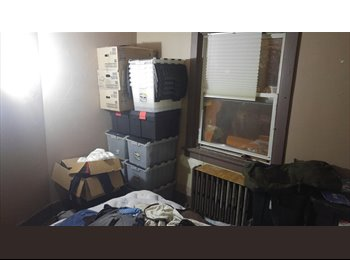 Videogamer Looking For Reliable Roommate To Share Apartment