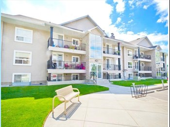 EasyRoommate CA - Roommate wanted for great home in convenient location, Calgary - $600 pcm