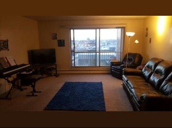 1 bedroom in 2 bedroom Calgary downtown apartment
