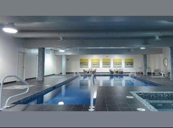 EasyRoommate CA - Chambre à louer dans un penthouse de luxe à Montréal/Room for rent in a luxurious penthouse in Montr, Montréal - $800 pcm