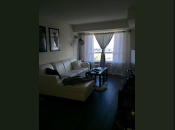 Etobicoke one room
