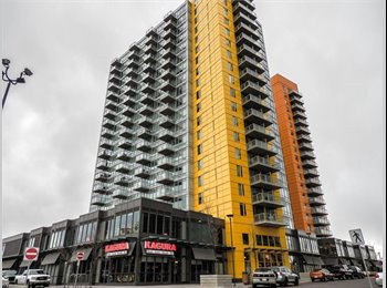EasyRoommate CA - Roomate wanted! Beautiful, spacious condo, 2 bed/2bath, furnished living room, Calgary - $625 pcm