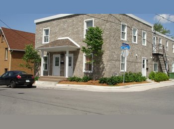 EasyRoommate CA - Furnished batchelors and rooms regularly available, Ottawa - $345 pcm