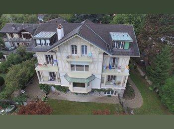 EasyWG CH - UNIQUE : 280 m2 Lausanne centre - Lausanne, Lausanne - 915 CHF / Mois