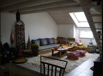 EasyWG CH - Chambre dispo dans un bel appartement en plein centre de Genève! - Grottes - Saint-Gervais, Genève / Genf - 1300 CHF / Mois