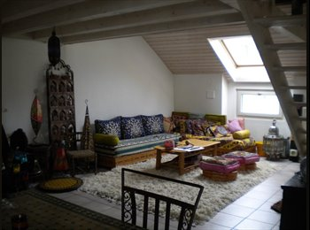 Chambre dispo dans un bel appartement en plein centre de...