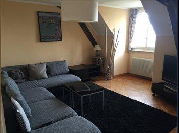 EasyWG CH - MORGES: Chambre à louez dans un appartement meublé, Morges - 900 CHF / Mois