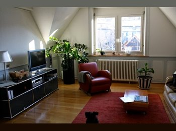 EasyWG CH - central flat to share in Zurich City, Zürich - 1 400 CHF / Mois