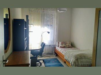 Chambre simple à louer