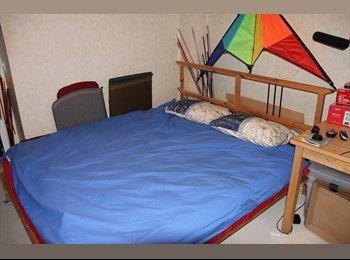 Une chambre en coloc / sous loc