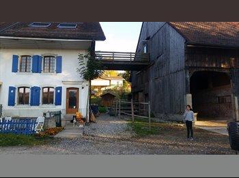 EasyWG CH - Chambre à louer à 17 min de lausanne, Gros de Vaud - 690 CHF / Mois