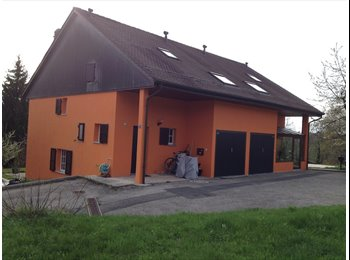 EasyWG CH - Chambre en colocation dans une maison avec jardin - Lausanne, Lausanne - 1300 CHF / Mois