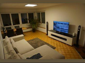 Beautiful bright apartment in Wipkingen