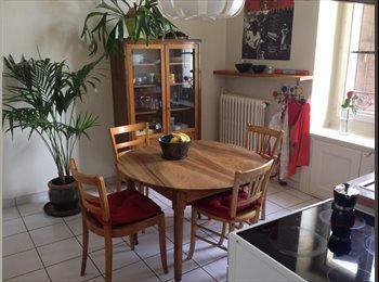 EasyWG CH - 1 colocataire homme ou femme, non-fumeur - Grottes - Saint-Gervais, Genève / Genf - 1050 CHF / Mois