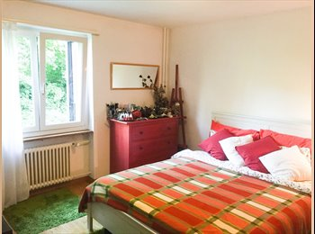 LOOKING FOR A QUIET ROOM IN ZURICH?