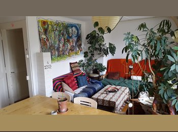 EasyWG CH - Chambre de ouf! - Boudry, Neuchâtel / Neuenburg - 430 CHF / Mois