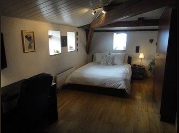 EasyWG CH - Chambre vue sur le lac et hypercentre (6 mois) - Lausanne, Lausanne - 650 CHF / Mois