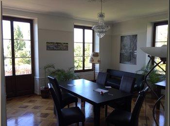 EasyWG CH - Sous-location de chambre dans un 9.5 pièces - Lausanne, Lausanne - 1100 CHF / Mois