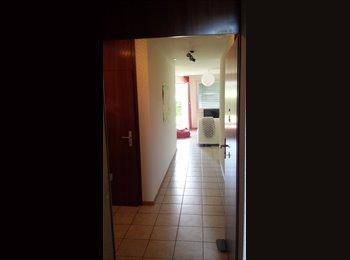 EasyWG CH - Bail à céder - Neuchâtel / Neuenburg, Neuchâtel / Neuenburg - 930 CHF / Mois