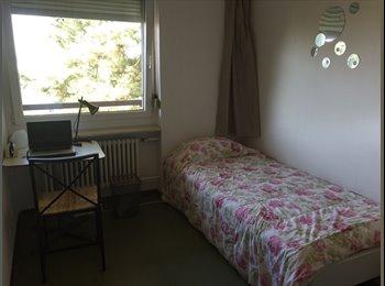 Wg- Zimmer in Zürich ( nur für ein Monat!)
