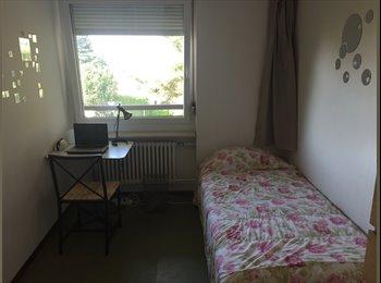 Wg- Zimmer in Zürich