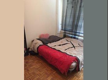 EasyWG CH - Colocation meublée rue de Carouge - Augustin - Plainpalais - Centre - Plainpalais - Acacias, Genève / Genf - 860 CHF / Mois