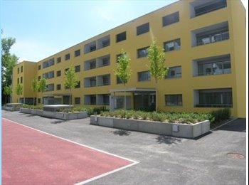 EasyWG CH - Colocation dans un beau 3 1/2 pièces - Lausanne, Lausanne - 1200 CHF / Mois