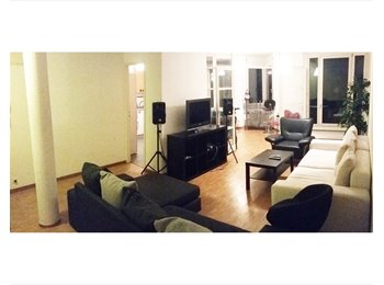 EasyWG CH - Great room with private bathroom in a spacious flat - Paquis - Nation, Genève / Genf - 1 300 CHF / Mois