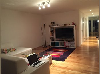 Room in large shared flat