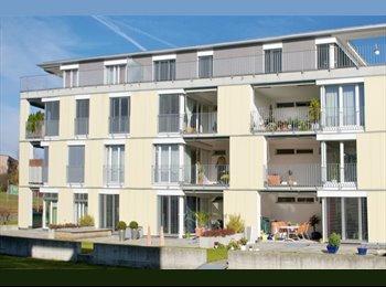 EasyWG CH - WG Zimmer zollikofen - Kirschenfeld-Schlosshalde - 4. Bezirk, Bern / Berne - 700 CHF / Mois