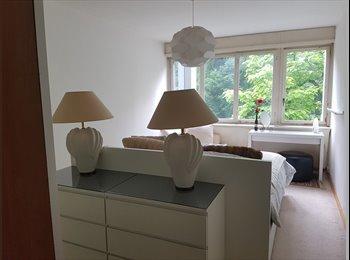 EasyWG CH - Colocation d'une chambre de 20m2 - Champel, Genève / Genf - 1300 CHF / Mois
