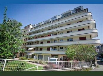 EasyWG CH - joli studio proche du centre ville !!!!!!! - Fribourg, Saane - Sarine - 550 CHF / Mois