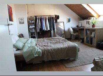 Chambre 25 m2 à Daillens