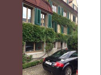 Chambres meublées dans belle demeure au centre de Zürich