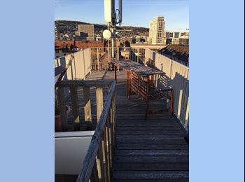EasyWG CH - Wohnung mit privaten Dachterrasse, Zürich - 1100 CHF / Mois