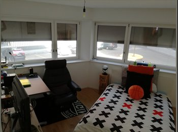 EasyWG CH - ROOM RENTING / APARTMENT SHARING ZURICH, Zürich - 1 250 CHF / Mois