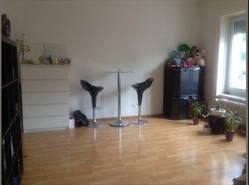 Subrent Studio Flat in Zurich